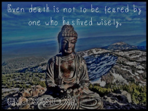 Even Death Is Not To Be Feared By One Who Has Lived Wisely. ~ Buddhist ...