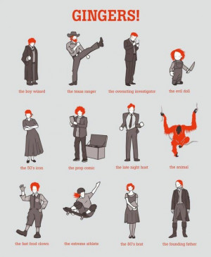 Funny Wallpaper Jokes & Humor Collections