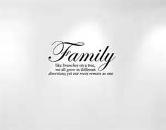 ... family quotes cancer quotes inspirational quotes wall decals quotes