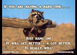 AA Bullying - racoon hanging on - it will get better