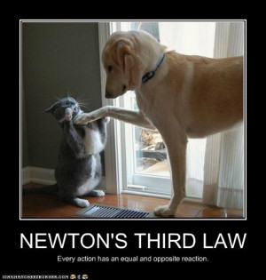 Related Pictures module 10 newton s laws