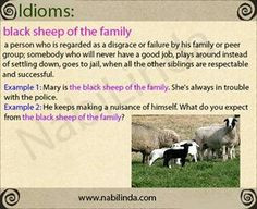 Black sheep of the family More