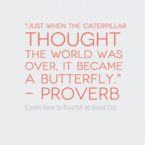 proverb1.png