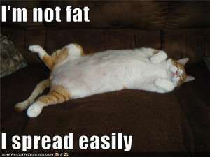 Fat can BE gross, but is fat ALWAYS gross? Not necessarily! After all ...