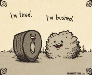 tired.jpg#tired%20497x406