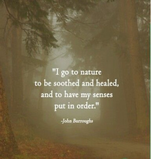 ... and healed and to have my senses put in order john burroughs # quotes