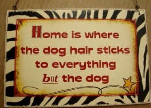 home is where the dog hair sticks to everything but the dog