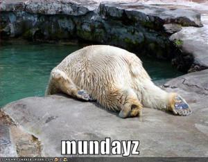 Monday morning blues.....