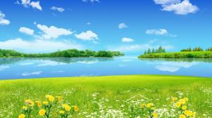 Sunny spring day wallpaper