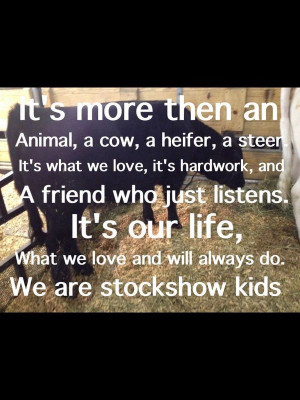 and rodeo quotes about life livestock showing champion slap more