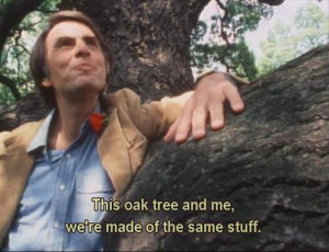 thesilkroute:Carl Sagan's Cosmos: A Personal Voyage (Episode 2 One ...