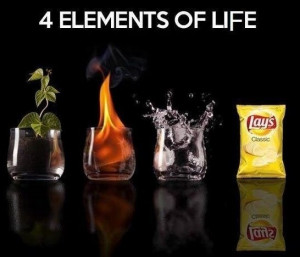 Jokes-2014-The-4-Elements-Of-Life.jpg