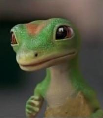 martin the geico gecko commercial geico