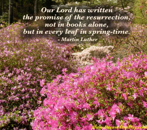 Our Lord has written the promise of the resurrection ,