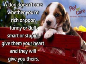 dog doesn't care whether you're rich or poor, funny or dull, smart ...