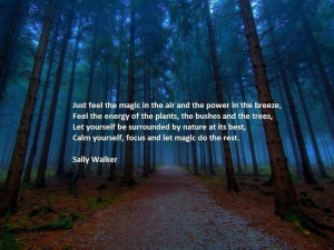 Wicca Quotes, Magic, Exquisite Quotes, Trees, Power Of Mothers Nature ...