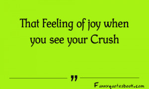 Funny-Quotes-about-Crush-500x300.png