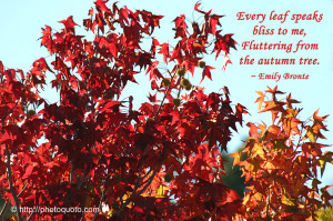 Autumn Quotes Famous Poems Sayings About Fall Pic #13