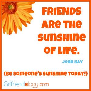Summer Friend Quotes Sunshine, friendship quote