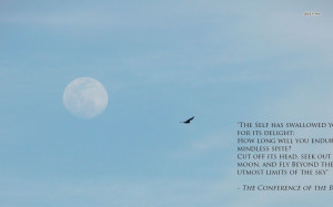 the Birds quote wallpaper 1280x800 The Conference of the Birds quote ...
