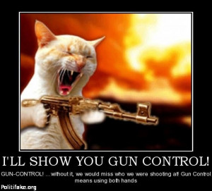 ll show you gun control fool