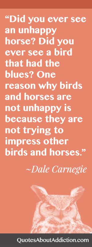 Have You Ever Seen an Unhappy Horse or Bird?