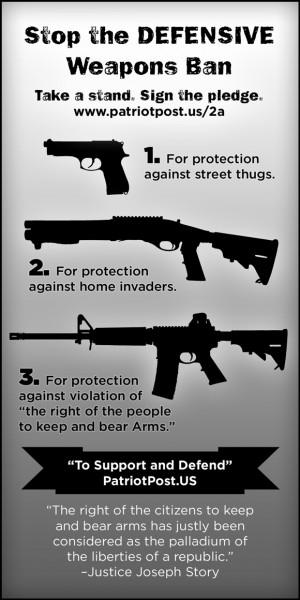 Harrolds.Blogspot.com: 2nd Amendment - Please, sign the 2A Pledge.