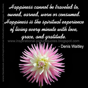 Happiness cannot be traveled to, owned, earned, worn or consumed ...