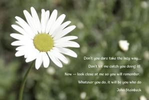 Daisy Quotes