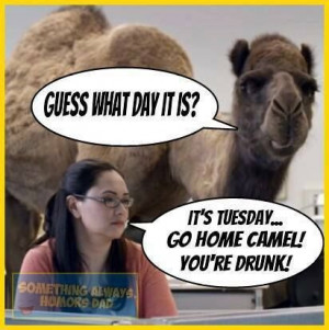 hump day! NOT :p
