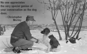Dog Quotes - Wonderful Sayings About Man's Best Friend