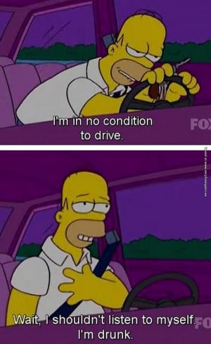 funny pictures homer driving drunk
