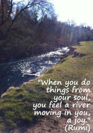 Joy quote via Carol's Country Sunshine on Facebook