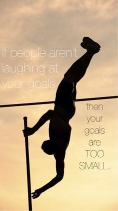 ... don't pole vault.....AND KNOW THIS!!!!! DEFINITION OF LIFE...EXACTLY