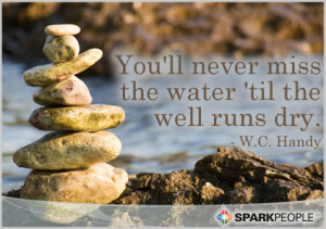 ... Quote - You'll never miss the water 'til the well runs dry