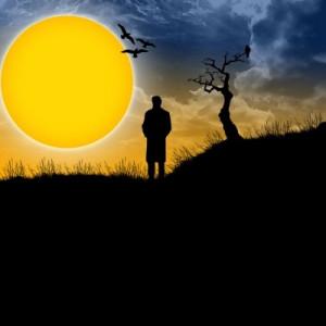 Solitude - Image Page