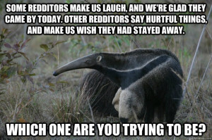 Funny Anteaters Pictures Anteater Facts