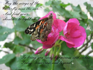 May the wings of the butterfly kiss the sun. And find your shoulder to ...