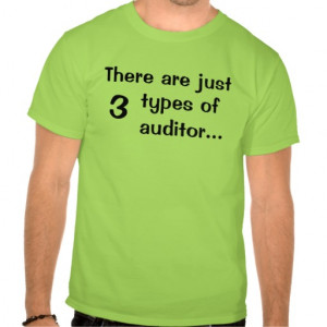 Just 3 types of auditors - Funny T Shirt