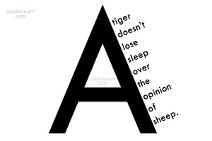 Opinion Quote: A tiger doesn't lose sleep over the...
