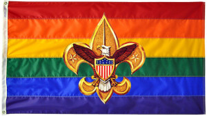 QUEER QUOTE: Boy Scouts Rescind Homophobic Ban On Openly Gay Adult ...