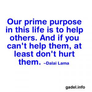 Purpose in this life by Dalai Lama