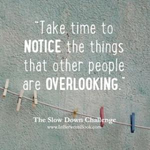 Slow Down Challenge