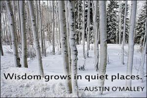 Quiet Life Quotes Quiet Places Wisdom Quotes