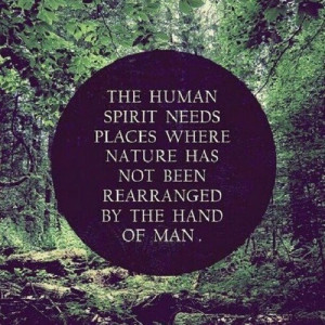 ... needs places where nature has not been rearranged by the hand of man