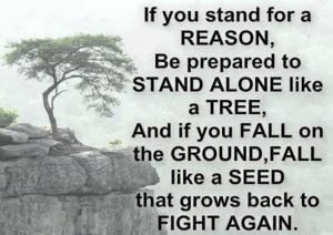 Motivational Wallpaper on Spirit to Fight Again!