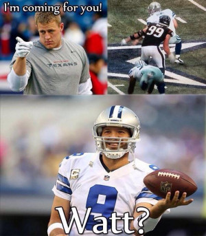 It was a great Dallas Cowboys season. And the Internet didn't ...