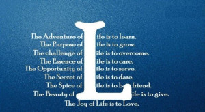 The adventure of life is to learn challenge quote