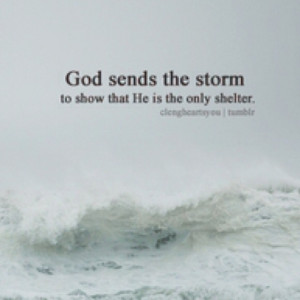 My shelter in the storm