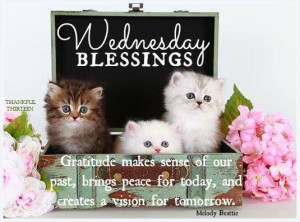 Happy Wednesday Blessing Quotes